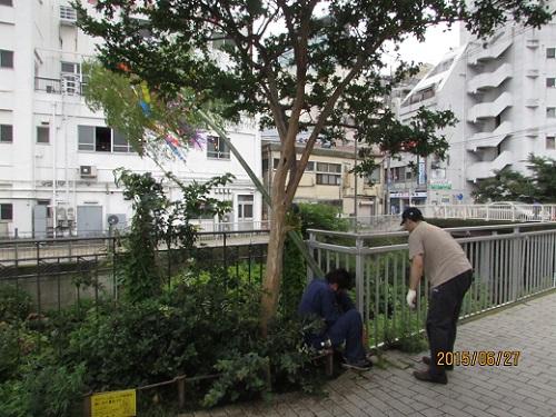 H27 七夕飾り (3).JPG