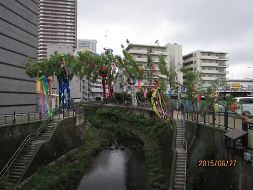 H27 七夕飾り (4).JPG