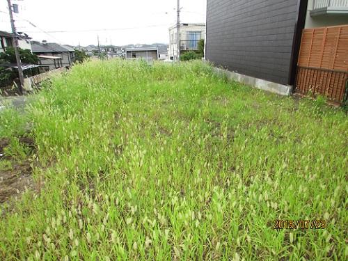 H27.7.24草刈り (1).JPG
