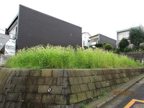 H27.7.24草刈り (2).JPG