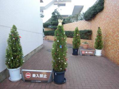 クリスマスツリー_12.19_001.jpg